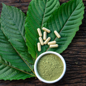 Mitragyna speciosa or kratom leaves with medicinal products in capsules and powder in white ceramic bowl and wooden table, top view